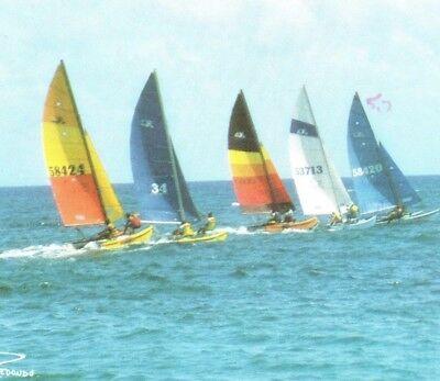 Wind surfing sailboats Redondo Rogelio Zelada Puerto Rico Vintage Postcard