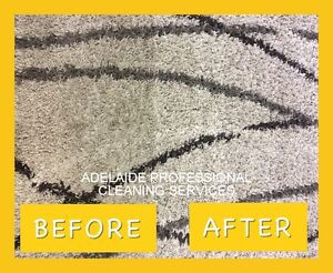 RUG CLEANING Adelaide CBD Adelaide City Preview