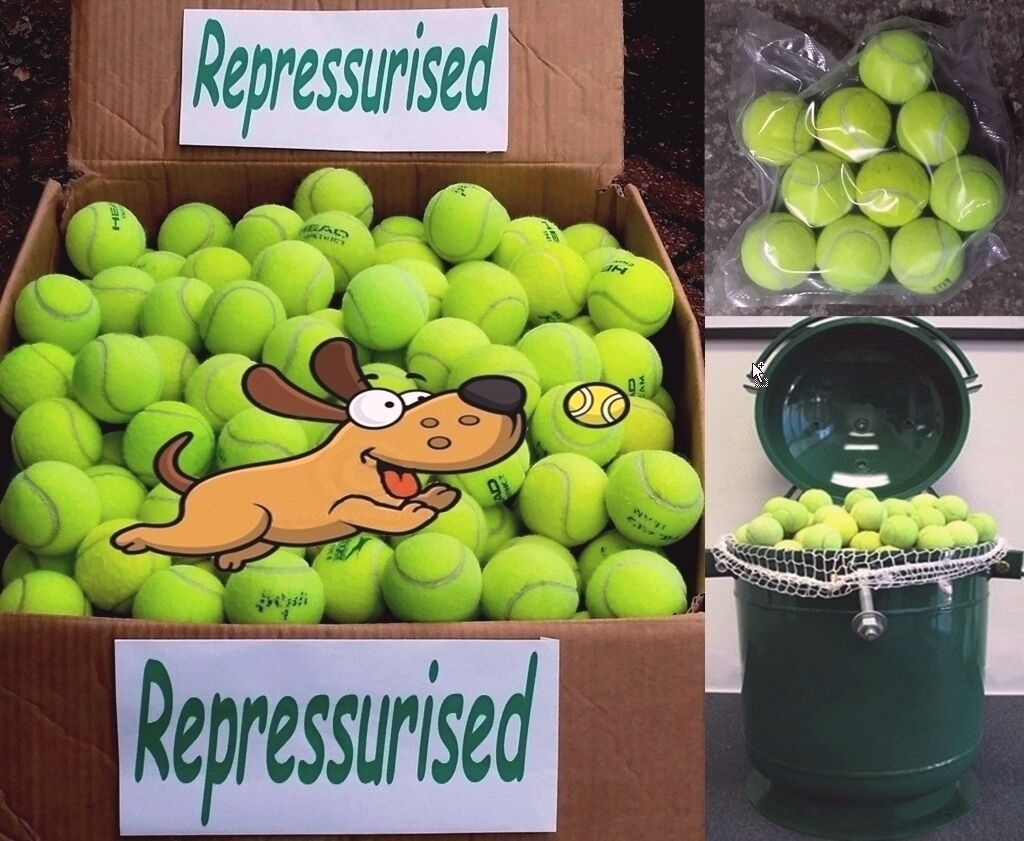 Used Tennis Balls For Dogs REPRESSURISED,VACUUM SEALED 15 20 30 50 Dog Toy Ball