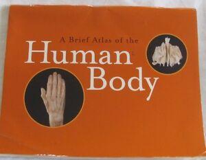 a brief atlas of the human body pdf