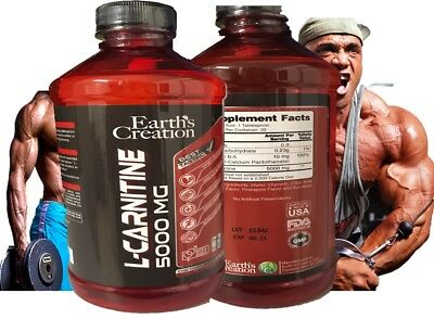 Earth's Creation Liquid L-Carnitine 5000MG & Vitamin B5 Maximum Endurance 16 onz for sale  Fort Lauderdale