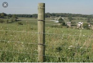 Looking for 60-100 fence posts