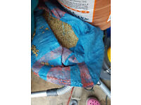 Natural Oat Grass Seeds Cat Rabbit Pet