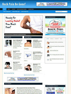 Back Pain Advice Website Blog With Affiliate Store Banners New Free Domain
