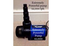 Jebao dc pump 12,000
