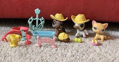 Littlest Pet Shop 339 Race About Ranch Orange Cat, 338  337 Horses - Race Horse Accessories