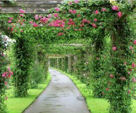 Gardener/hard landscaper