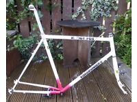 Muddyfox frame. Tange CroMo. Horizontal drop-outs. Fixie. With cranks + brakes.