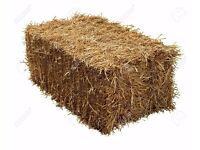 Medium size bale of hay, last one