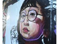 Mural/ Graffiti artist