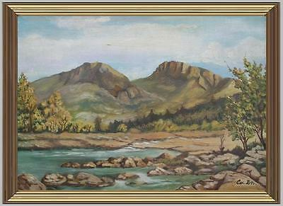ARTE NAIF bosco e sorgente di montagna olio tavola ENRICO COPETTA COEN 1925-89