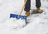 Call us to shovel your snow... affordable service