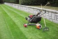 "Grass Cutting ""Fair price"""
