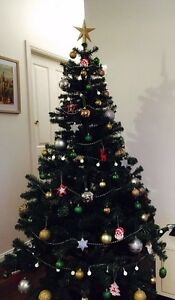 WANTED- Christmas Tree Birmingham Gardens Newcastle Area Preview
