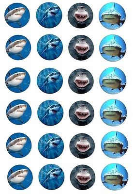 Deadly 60 Sharks Great White Tiger Shark Edible Cupcake Toppers x 24 ()