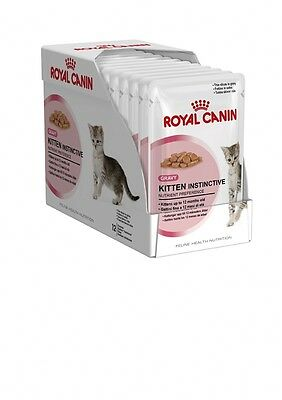 12 BAGS KITTEN SALSA 3oz ROYAL CANIN WET FOR KITTENS UP TO 12 MONTHS