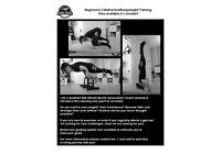 Calisthenics/Bodyweight training