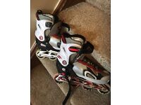 In Line roller skates size Adults 8-9