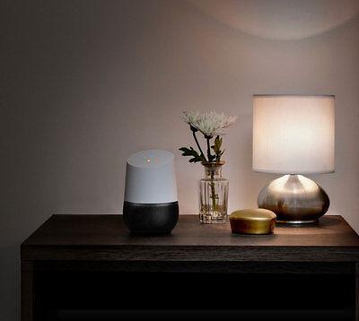Ein Chamäleon: Das Gadget lässt sich farblich der Umgebung anpassen. (© Google)