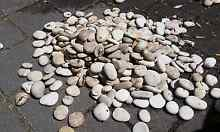 White Washed Pebbles (50-70mm) - 8 x 30kg bags Perth Region Preview
