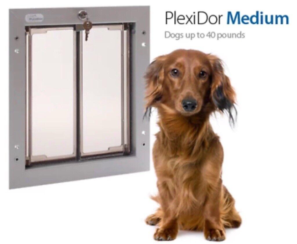 Plexi Dor Dog Door Medium Rrp 400 Best Dog Door On Market