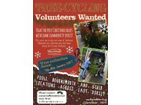 Volunteer this January! Help recycle Christmas Trees and raise money for people with disabilities!
