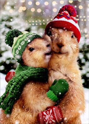 Avanti Christmas Prairie Dogs Box of 10 Cute Christmas Cards