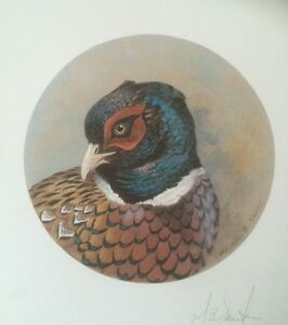Prints Pheasant Partridge  M B Sawdy Hunting Shooting Christmas Gift