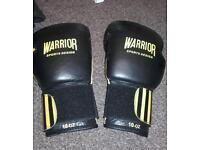 Boxing gloves 10-oz warrior air vent