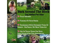 Bark Around The Block Plymouth dog walker/pet sitter