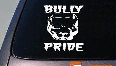 Bully Stolz Amerikanischer Pit Pitbull 6