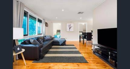 ROOM FOR RENT (BILLS/INTERNET/FURNITURE INC) BUS TO MONASH UNI