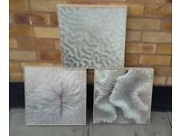 Set of 3 wall picture frame