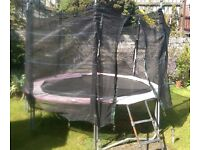 12ft Trampoline with surround and ladders