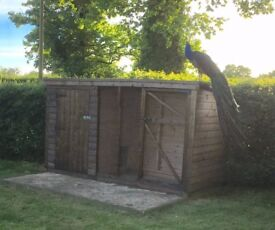 Large Treated Timber Framed Dog Kennel With Run