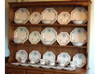 "Johnson Brothers ""Garden Trellis"" 39 pieces of tableware"