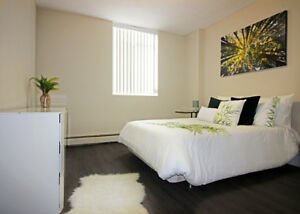 Renovated 2 Bdrm - Pets Welcome!