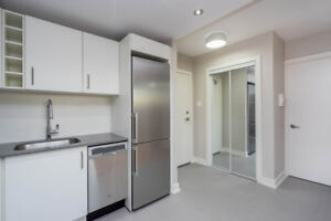 Fully Renovated 1 Bedroom Suite- (River & Dundas)