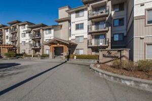 304 32063 MT WADDINGTON AVENUE Abbotsford, British Columbia
