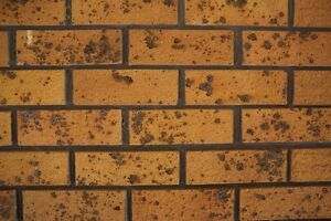 WANTED: House Bricks ex 1980s Maitland Maitland Area Preview