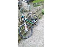 Scott single speed mountain bike
