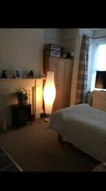 Large single room for non smoker in Lower Clarence rd Norwich