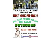 Local dogwalkers