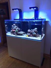 RedSea Reefer 350 / Hydra 26HD / Deltec / Jebao - Marine Reef Tank Aquarium FULL SYSTEM