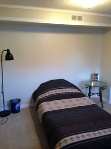 Nicely Located 2 Bdrm Bsmt Suite in Allendale Edmonton Edmonton Area image 5