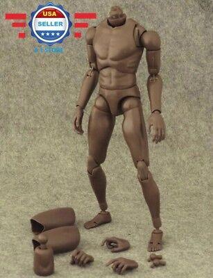 Free Shipping   1 6 Narrow Shoulder African American Male Body For Ttm18 Ttm19