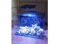 110 Litre Marine Fish Tank