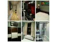 Room to rent in a superb city centre flat
