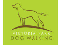 Dog (and puppy) walking and training. Caring, reliable Cardiff dog walker and trainer.