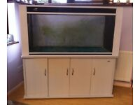 Fish tank/ ideal vivarium 5 ft with cabinet